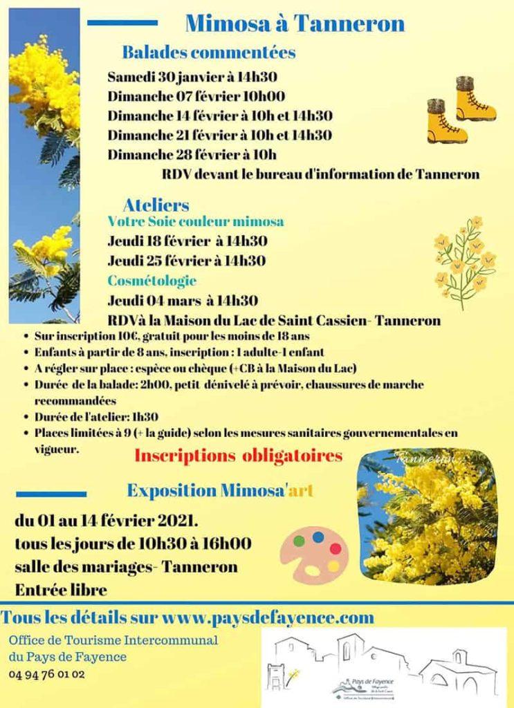 Fête du Mimosa en 2021